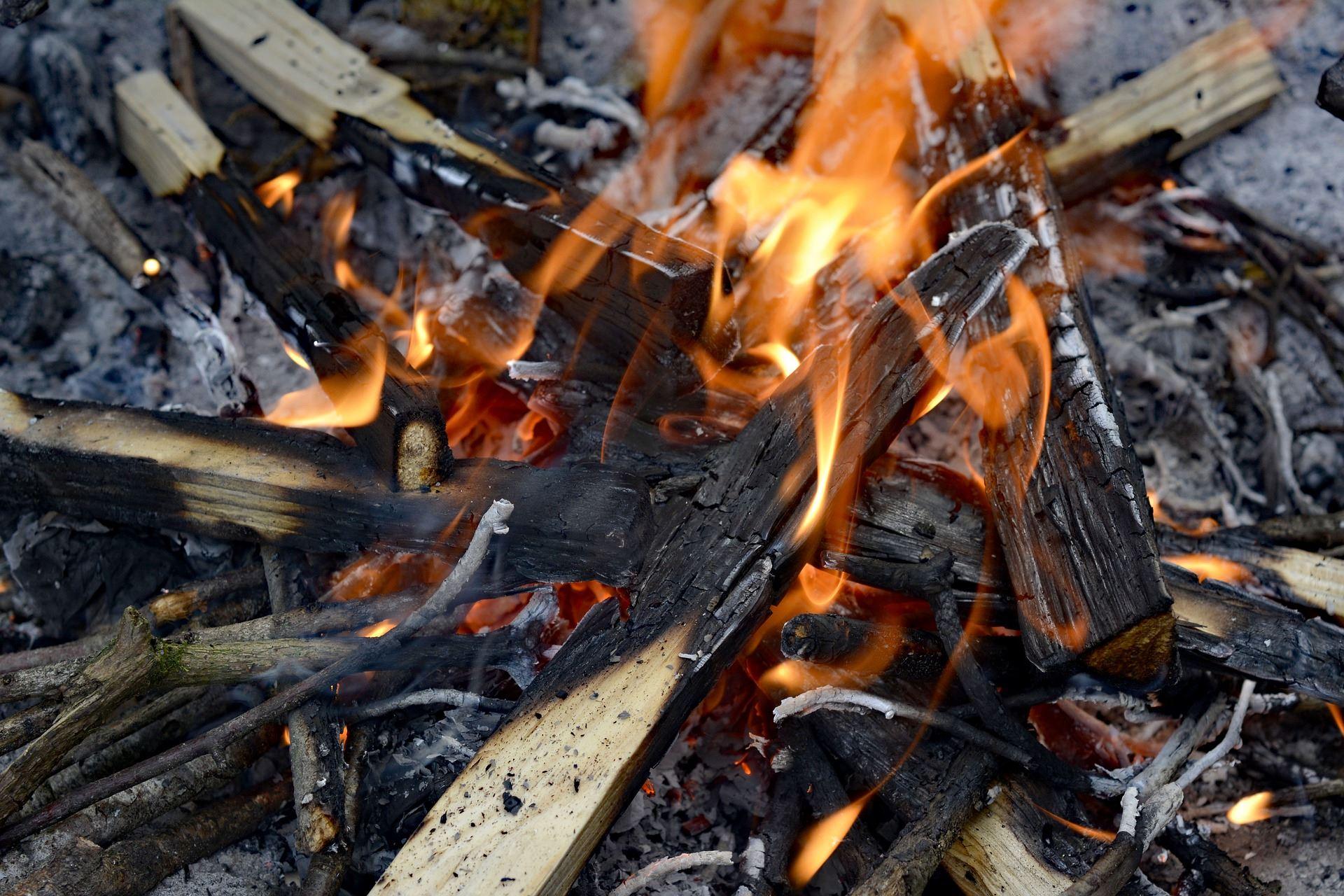 Naturnatten, harmånger, sindra, grillning,  © Naturnatten, harmånger, sindra, grillning, Naturnatten, harmånger, sindra, grillning