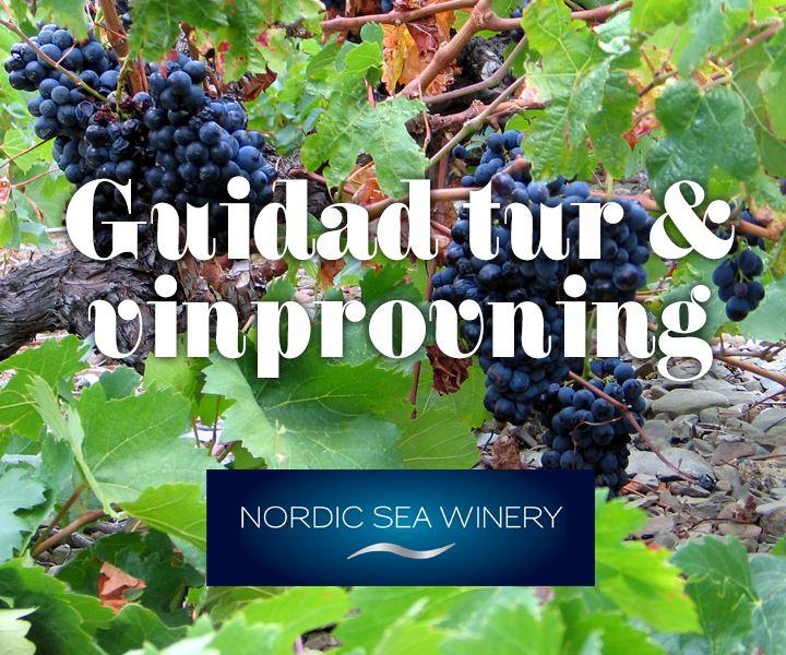 Från druva till vin - Guidning, vinprovning & deli och varmrätt/dessert