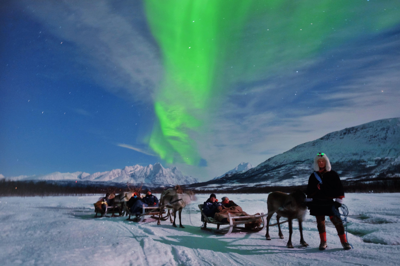 Reindeer Sledding & Northern Lights – Tromsø Lapland