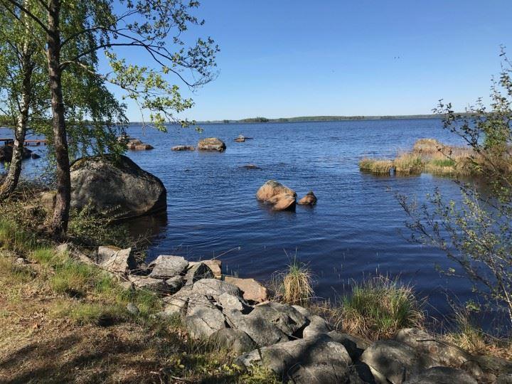 Familjeäventyr i Åsnens nationalpark, Bjurkärr