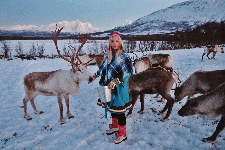 Samisk opplevelse med reinsdyrmating - Tromsø Lapland