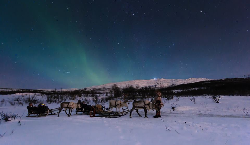 Overnight Reindeer Sledding and Northern Lights – Tromsø Lapland
