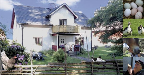 Stay at a farmhouse in Eriksgården