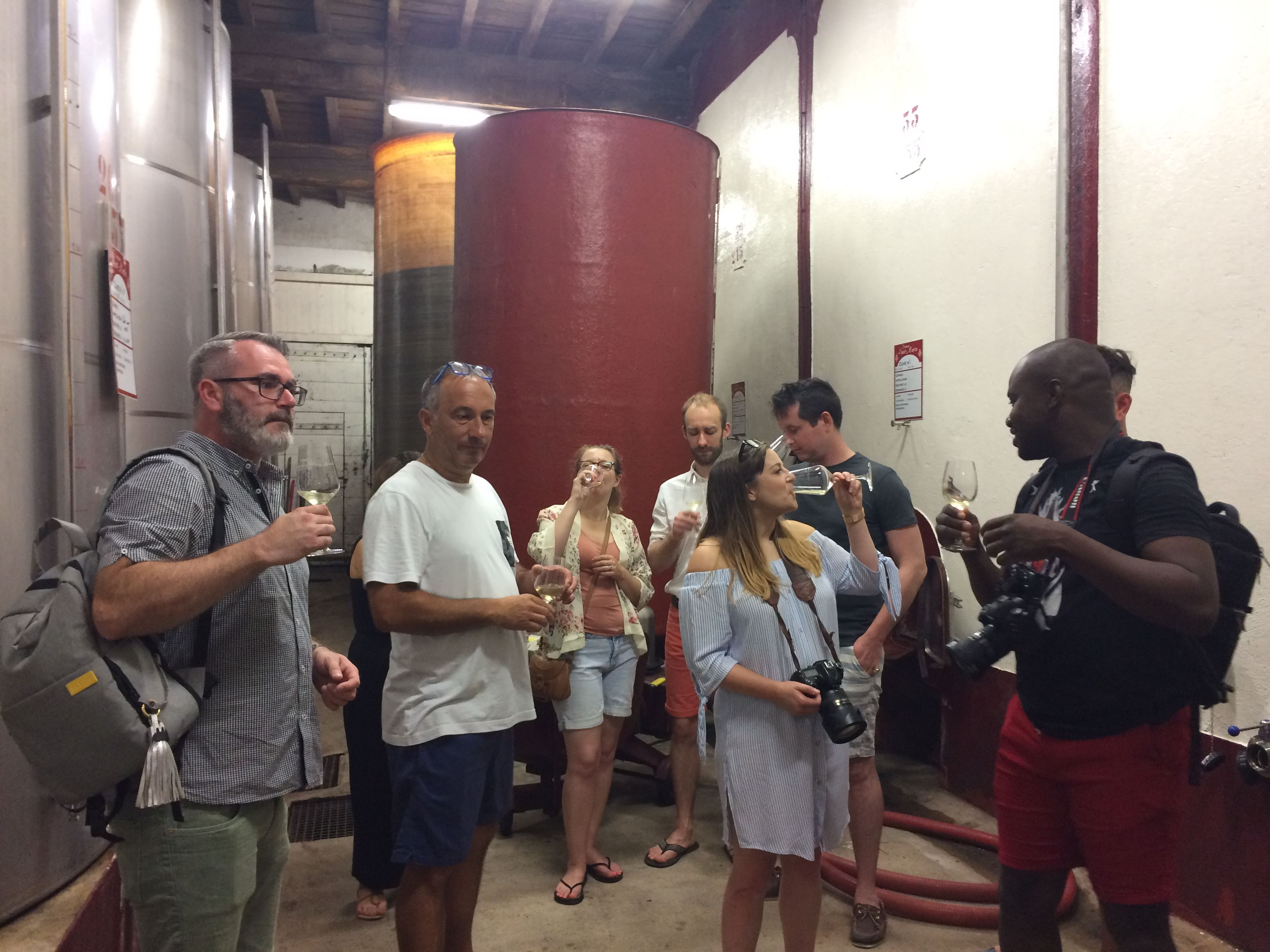 1/2 day tour - Wine - shared tour