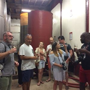 Shared minibus excursion - 1/2 Day - Visit of 2 vineyards & Wine tasting - F / GB - Trésor Languedoc Tours