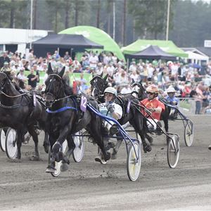 Breddtrav Bollnäs Travtävling Hälsingland