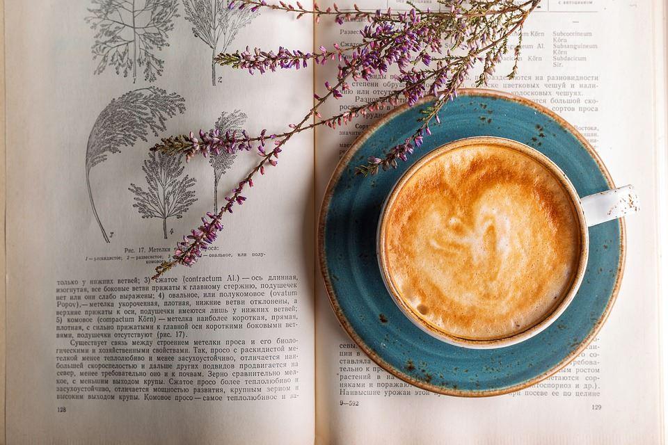 Ellens café och bokhandel
