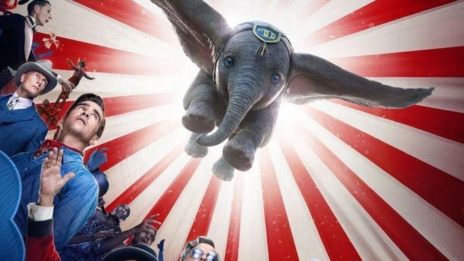 Biofilm - Dumbo