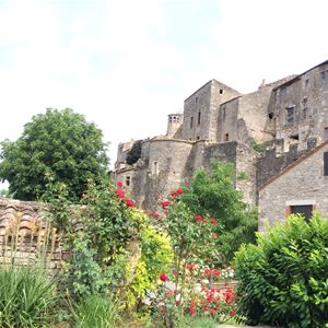 Day Excursion by minibus - Visit of Albi and Cordes sur Ciel - Private excursion - F / GB - Treasure Languedoc Tours