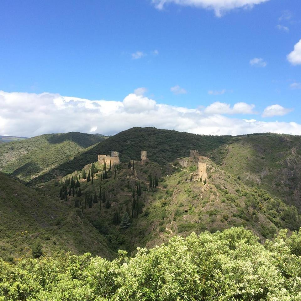 Excursion privée en minibus - Journée - Cité Médiévale de Carcassonne et Château de Lastours - F/GB - Trésor Languedoc Tours