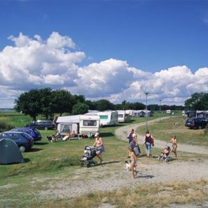 Tredenborgs Camping /Camping