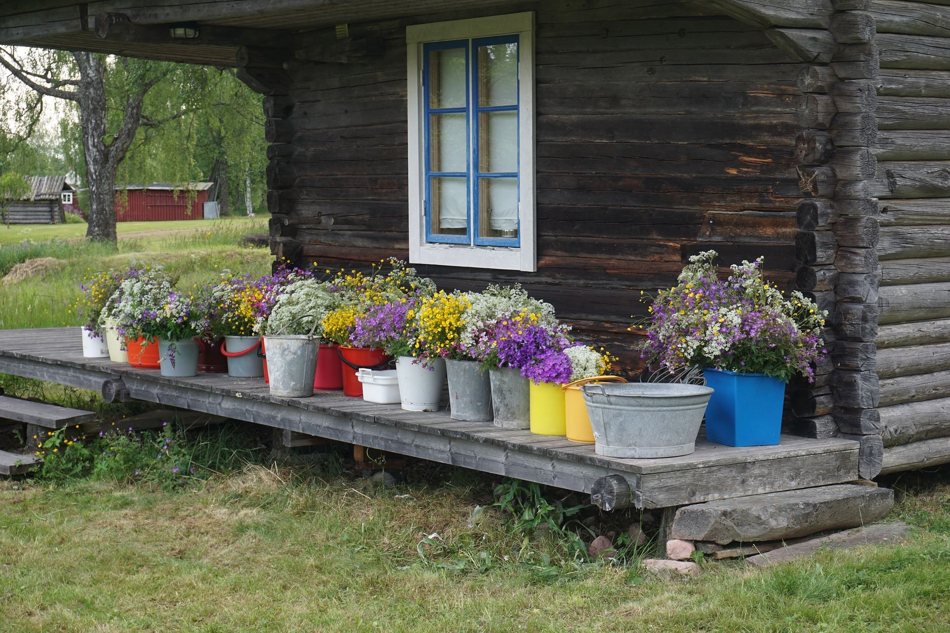 Midsommarfirande på Olnispagården - Sälens by