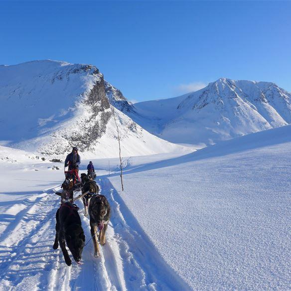 To Do Visit Narvik