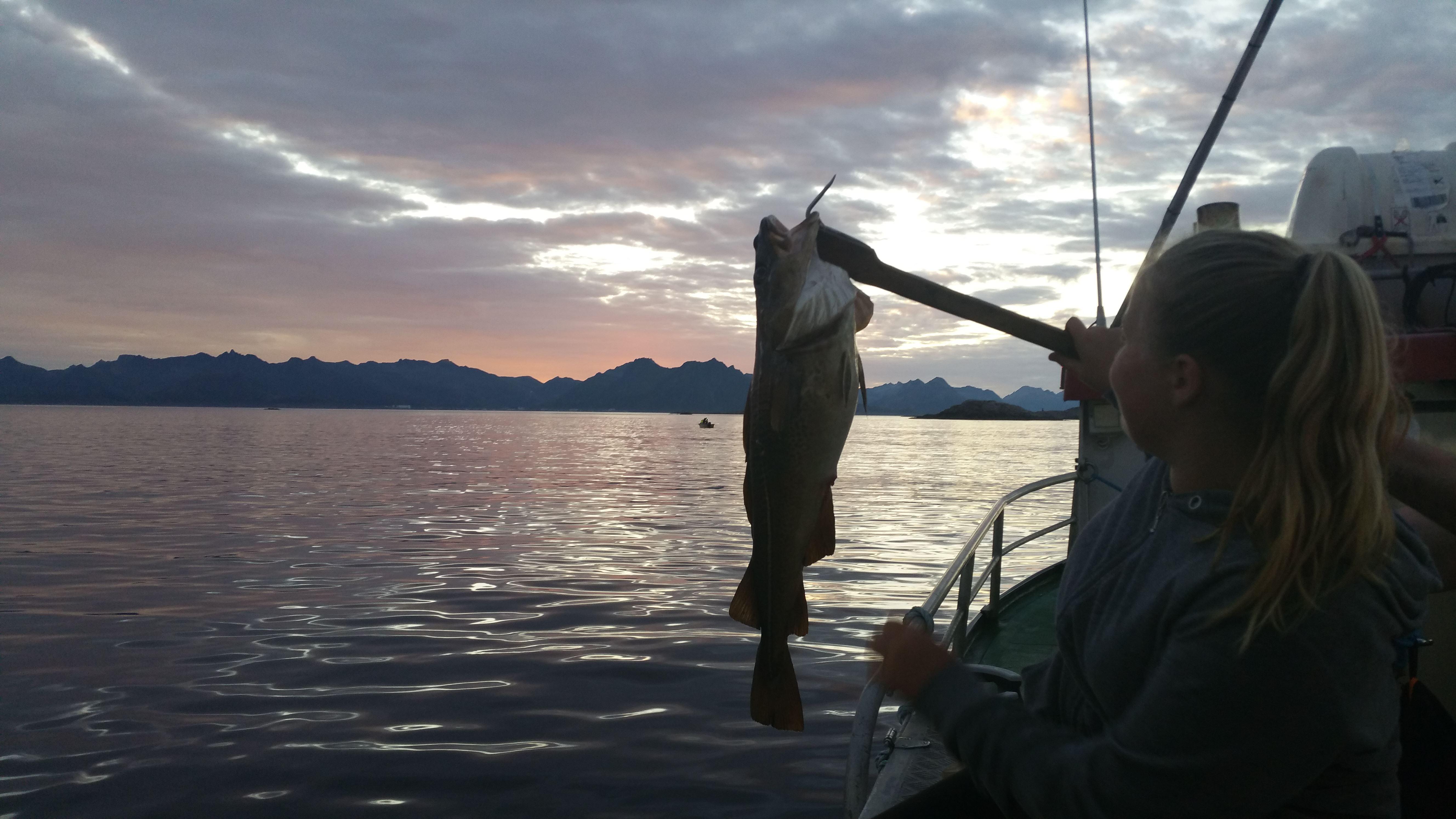 © Go2Lofoten, Fisketur i Midnattsol fra Henningsvær - Go2Lofoten