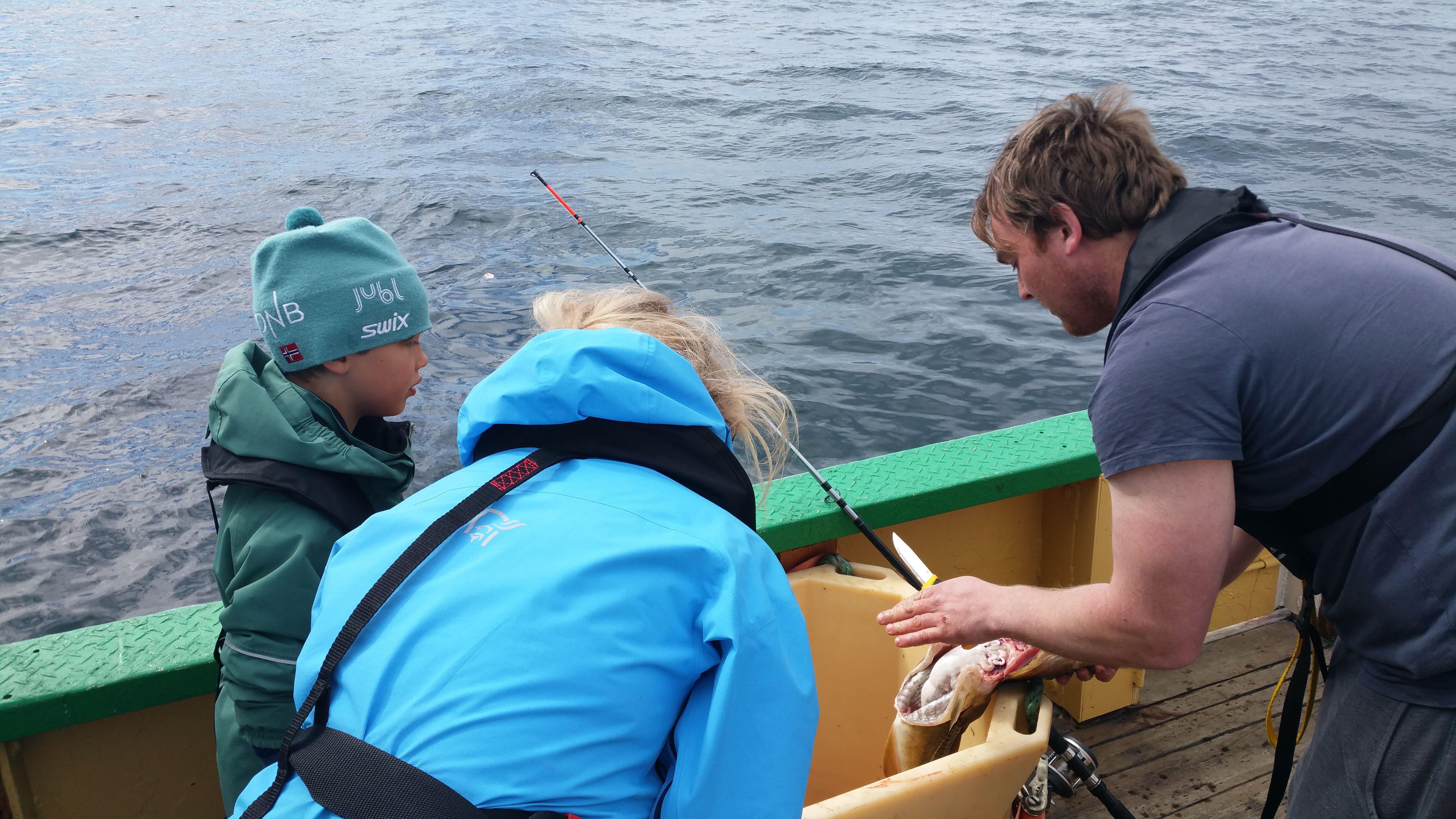 © Go2Lofoten, Fisketur avgang fra Henningsvær - Go2Lofoten
