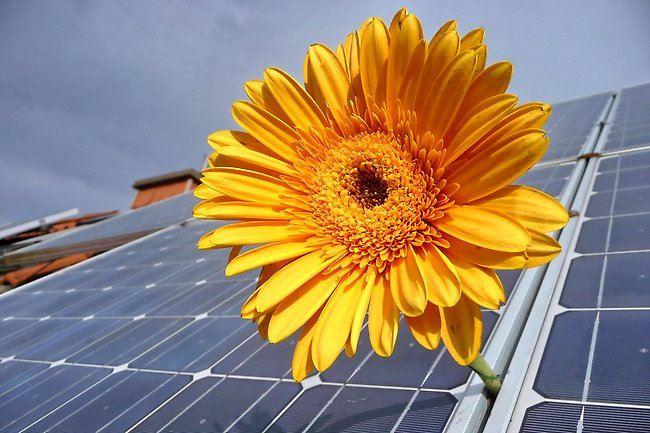 Nyfiken på solceller?