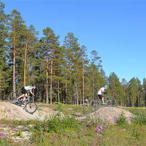 Bild på cyklister