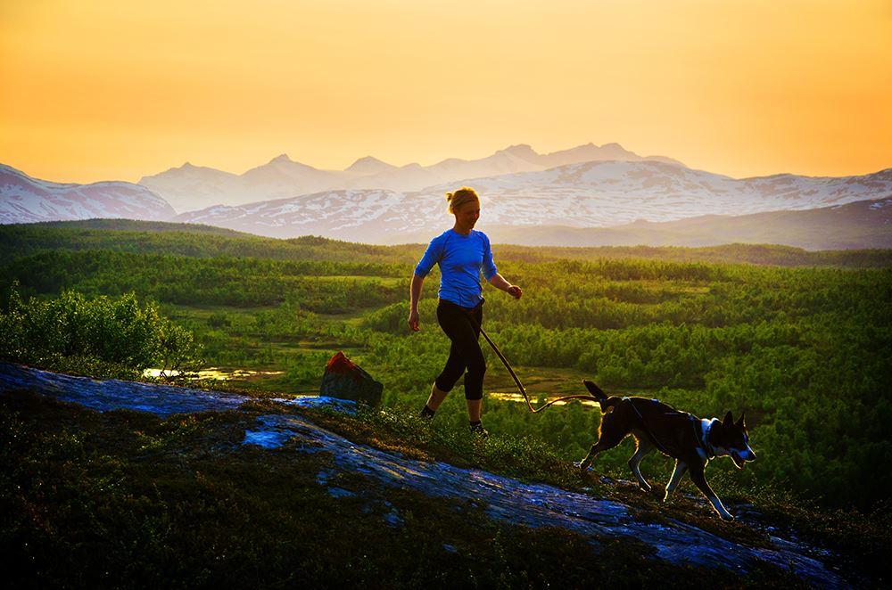 Tor Larsson, Gieravardo, the flower mountain