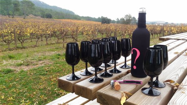 Excursion to the heart of AOP Languedoc Saint Christol, visit and tasting with Vign'O vins