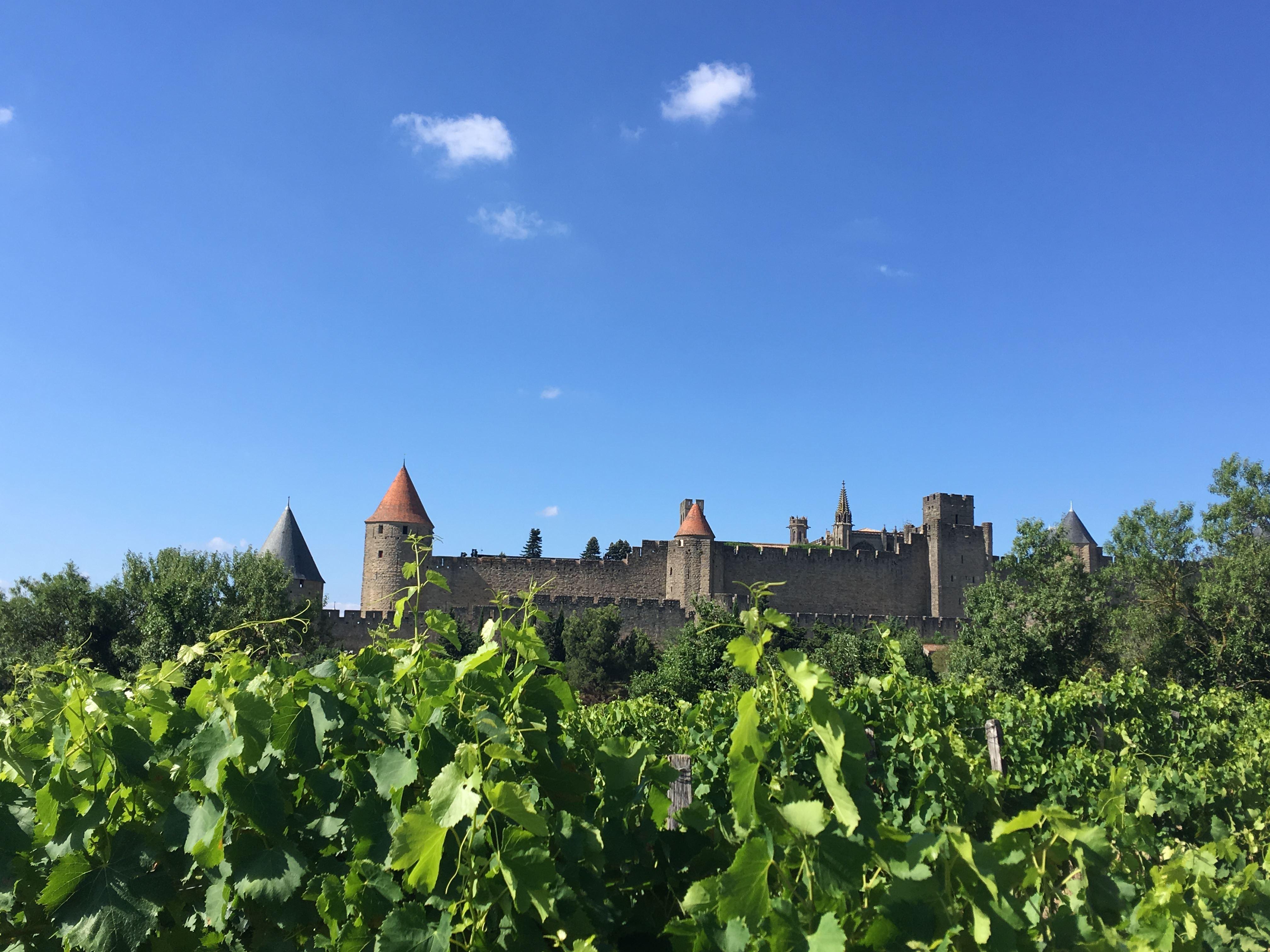 Excursion by minibus - An overview of Aude wines - Suntour