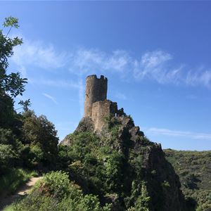 Minibus tour - A pleasant walk to visit the 4 Castles of Lastours - Suntour