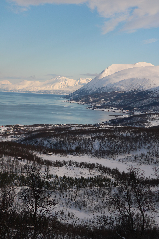 Arctic Adventure 2 nights package - Polar Cabin