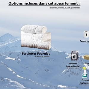 CIMES DE CARON 1106 / APPARTEMENT 2 PIECES CABINE 4 PERSONNES - 1 FLOCON BRONZE - ADA