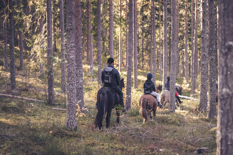 Emma Stjernstedt, Påsklovsäventyr med Islandshästar