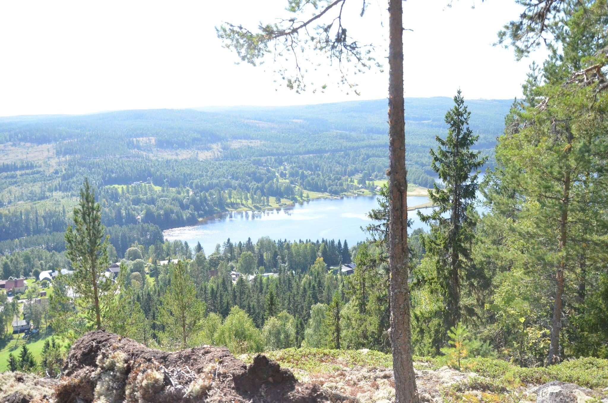 Nedansjö trail 2019