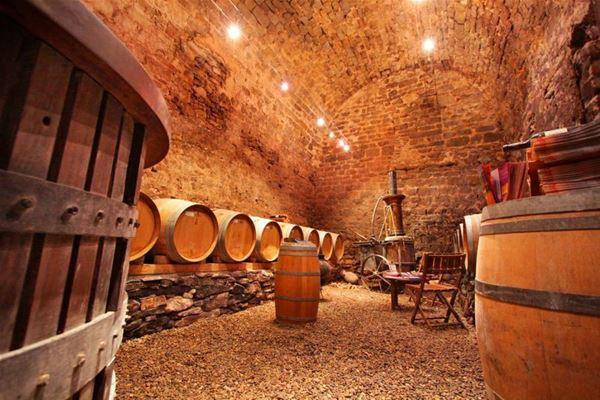 Dégustation de vins - Chateau du Donjon
