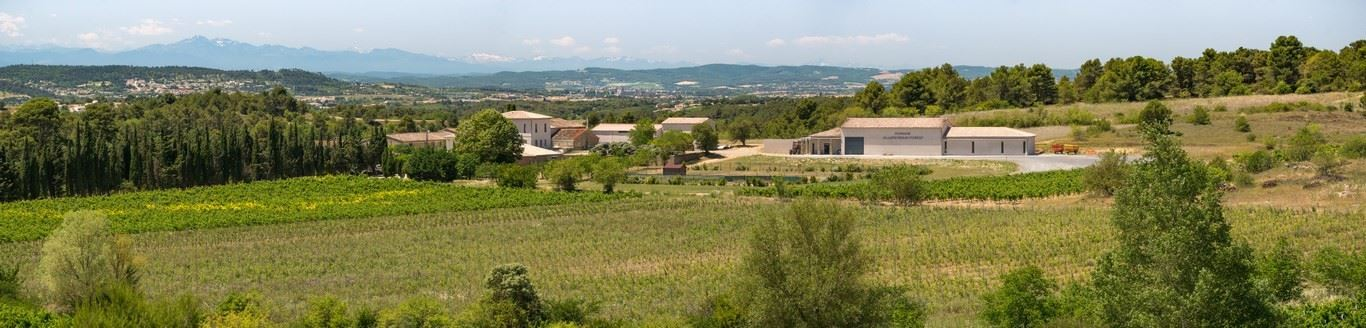 Dégustation des vins - Domaine Villepeyroux