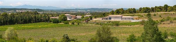 Dégustation de vins - Domaine Villepeyroux
