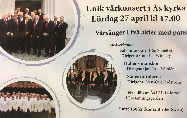 Foto: Vårkonsert,  © Copy: Vårkonsert, Spring concert