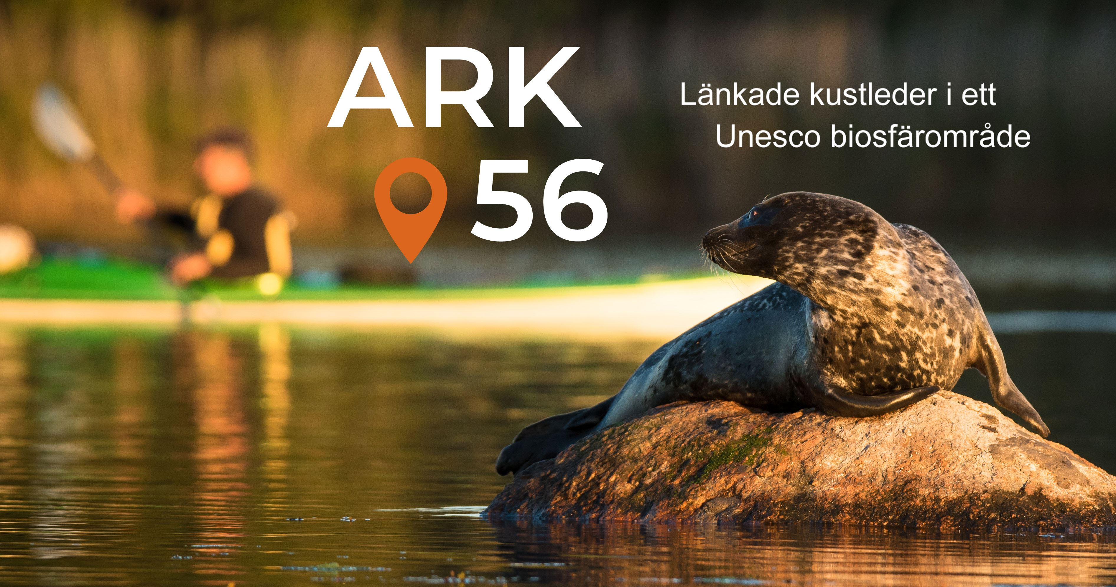 ARK56