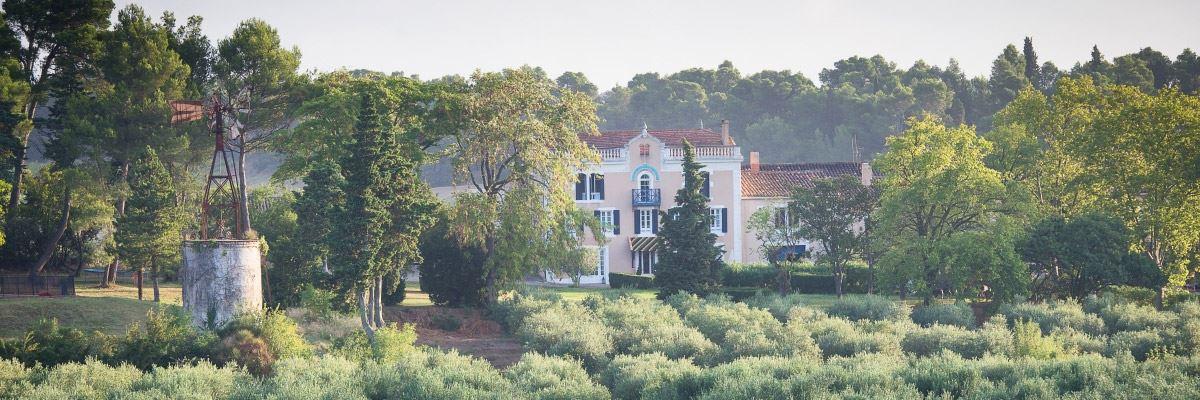 Dégustation de vins - Château Canet
