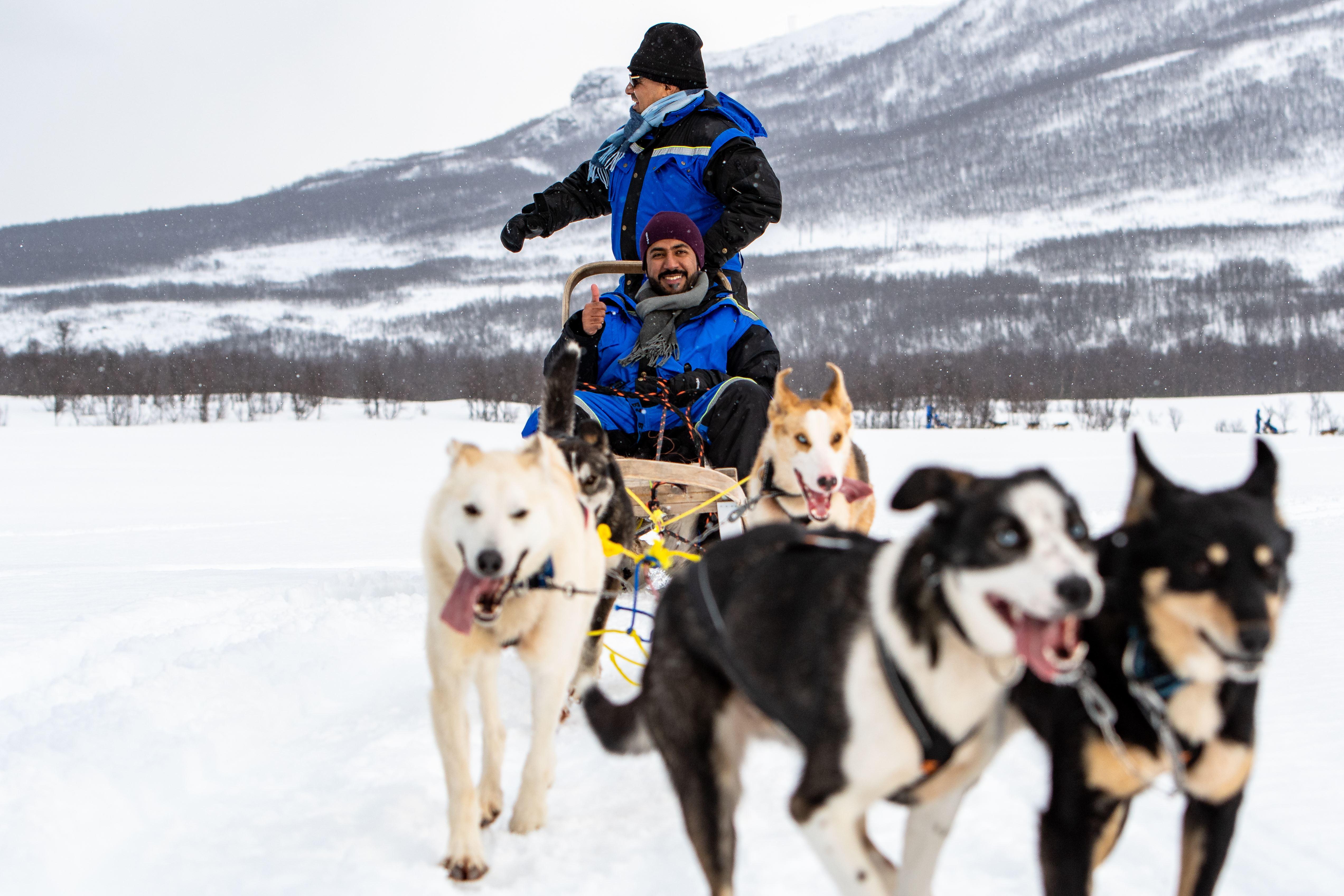Dogsledding: 13.00 -17.30 - Aurora Alps