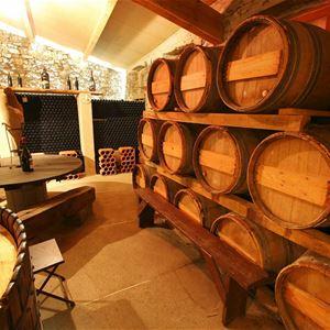 Dégustation de vins - Château de Villemagne