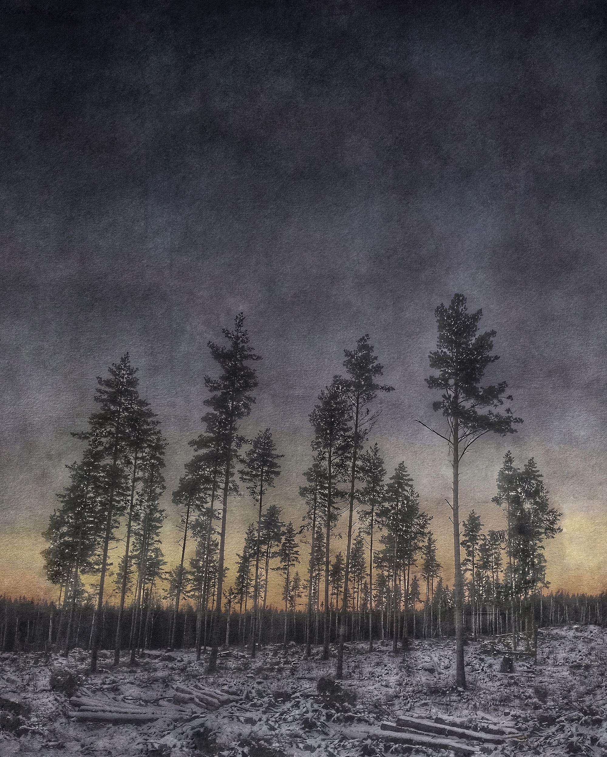 Nino Ramsby på Kvarnen i Söderhamn