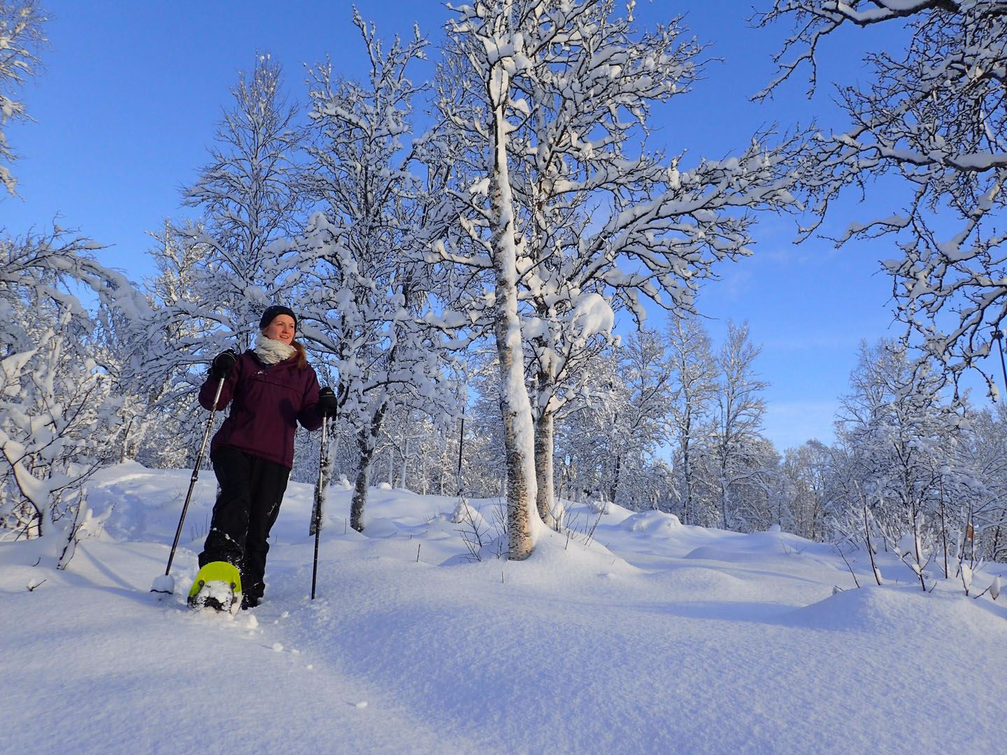 005. Guided easy snowshoeing with a visit to local café