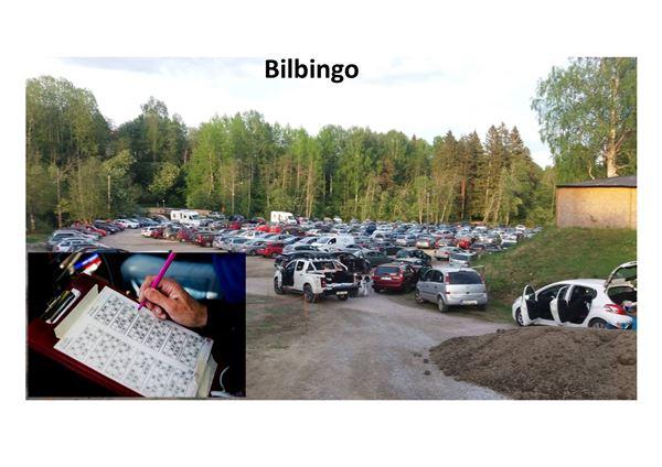 Bilbingo på Ånäsparken