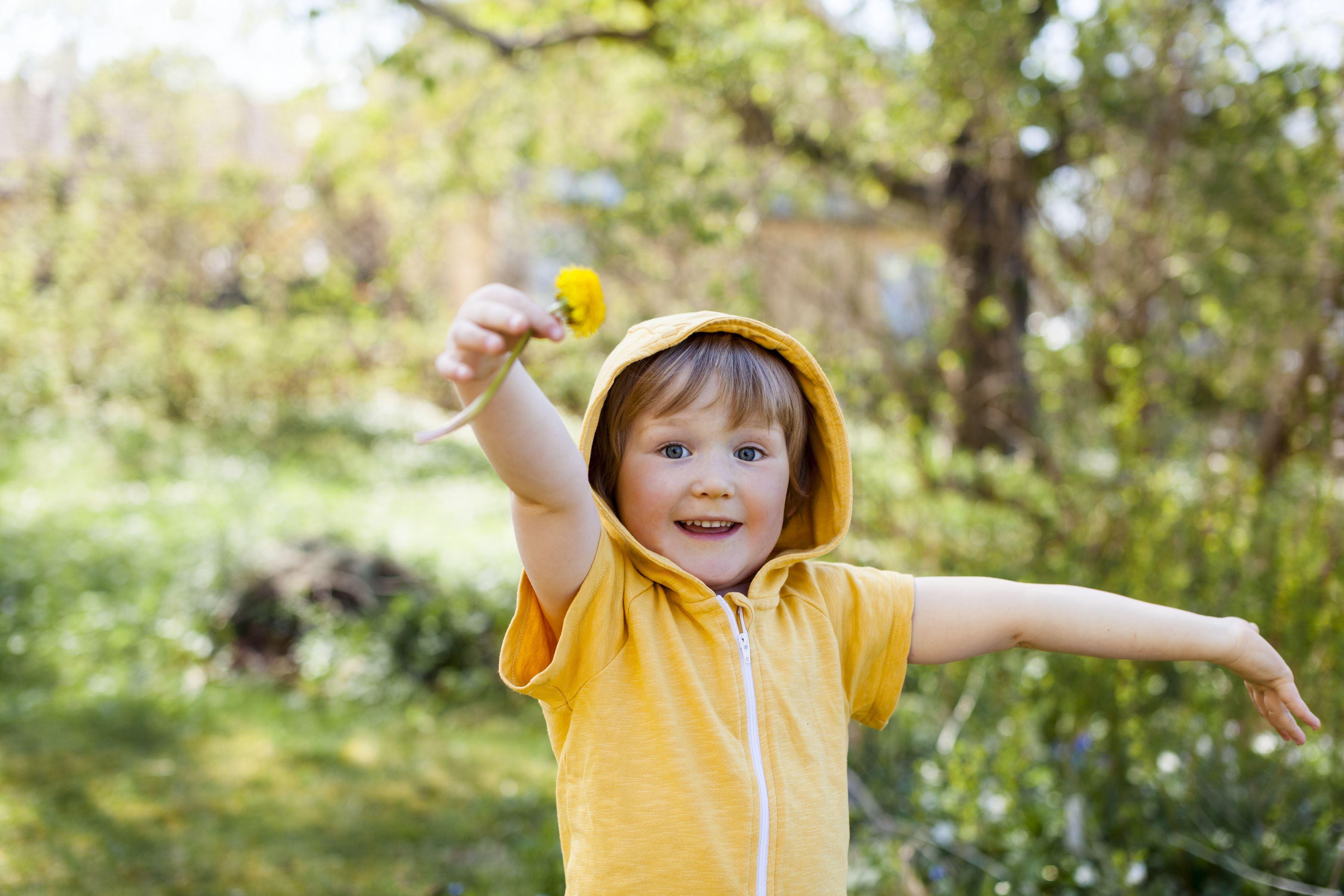 Vilda bin i natur och trädgård