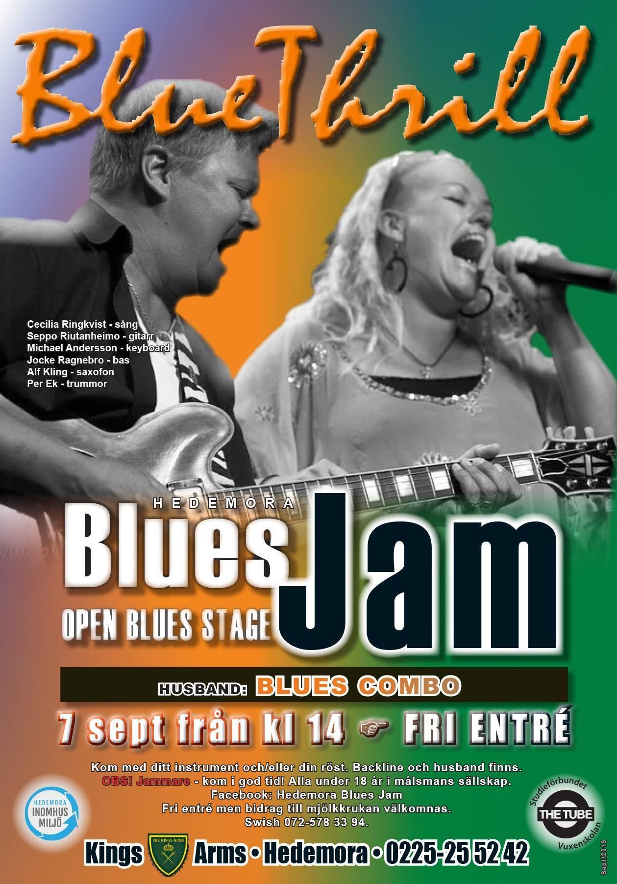 Hedemora Blues Jam + Blue Thrill