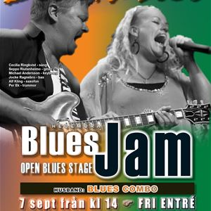 Hedemora Blues Jam + Blue Thrill