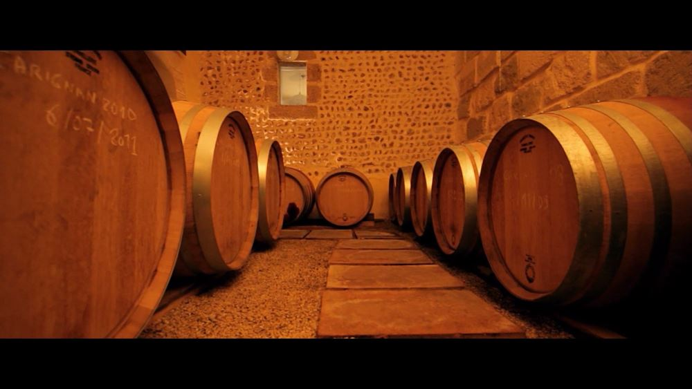 Excursion in the vineyards and organic estates with tastings with Vign'O vins