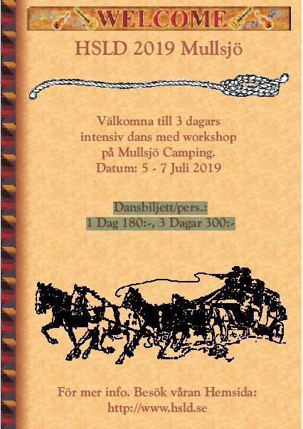 HSLD 2019 Mullsjö - Dans med workshop