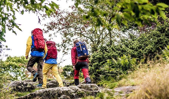 Guidad vandring vid Siljansfors skogsmuseum