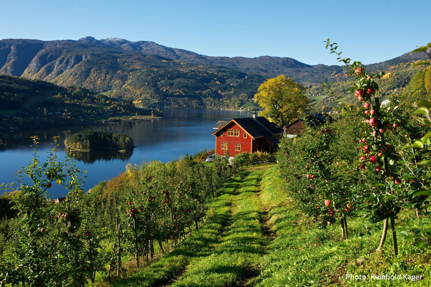 © Reinhold Kager, Travel like the locals - Syse gard i Ulvik
