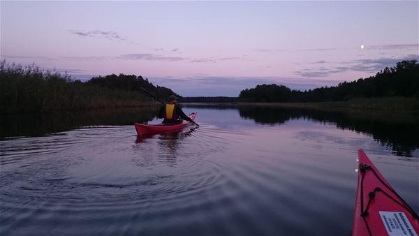 Madelen Zander,  © Multiadventures Sweden, Paddling i Färnebofjärdens nationalpark