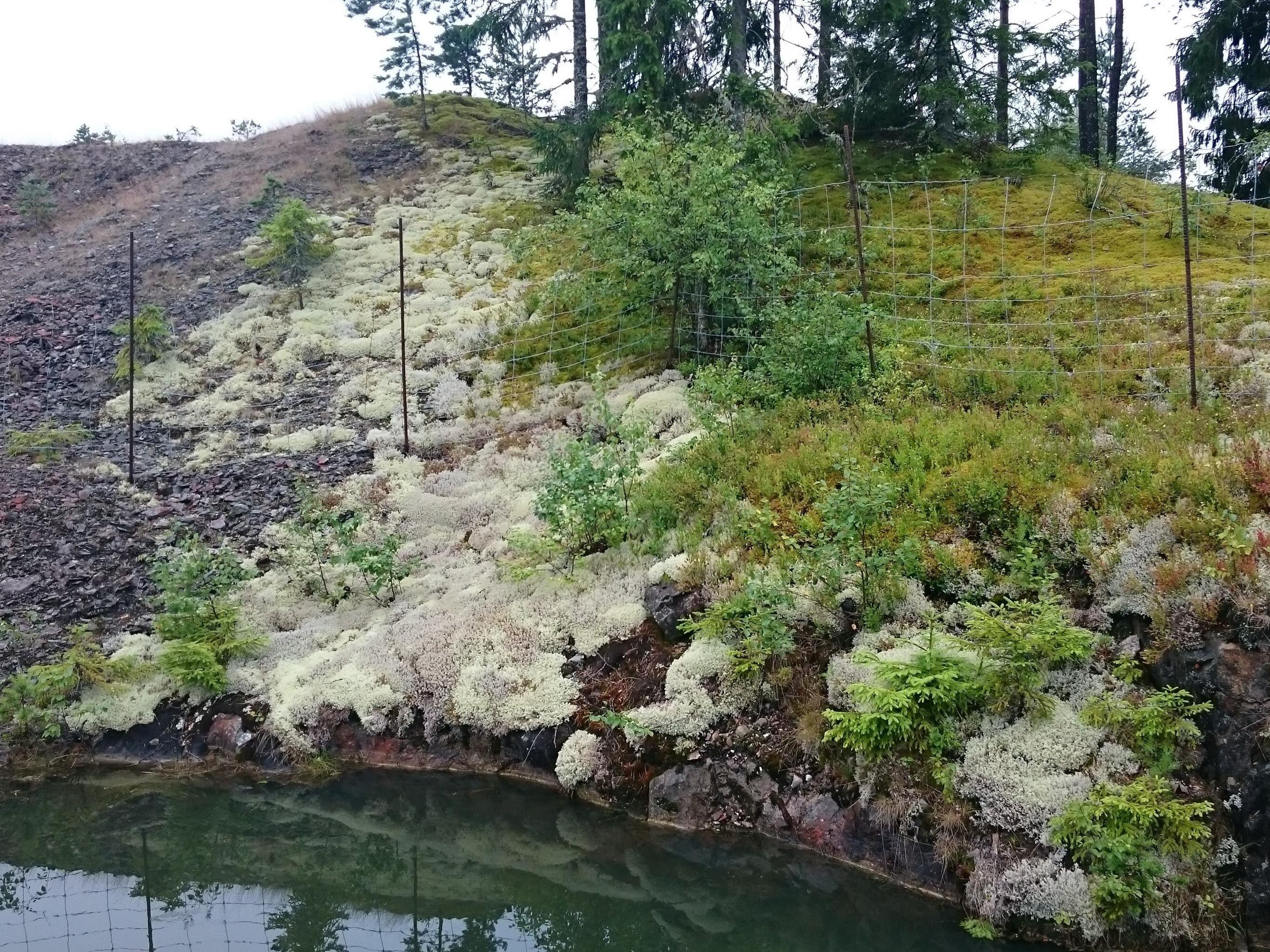 Vandring i gammal gruvmiljö på Humboberget