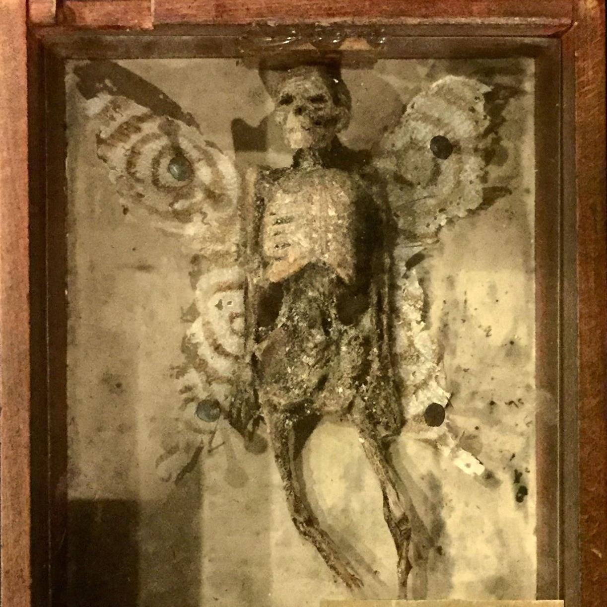 Eksklusiv aftenrundvisning i Museum Obscurum - Tema: Jagten på de forsvundne byer